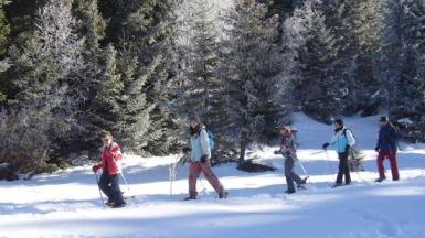 Snowshoeing-Family-Holidays_imagelarge